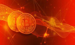 Bei Bitcoin Evolution sicher Bitmünzen anlegen